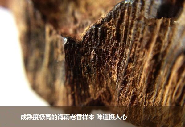 海南省老香.jpg